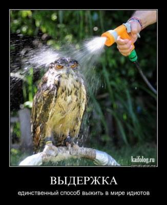 blog-tria.sumy.ua-05
